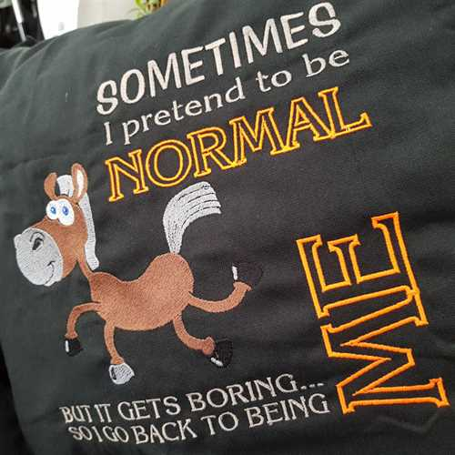 """Sometimes I pretend to be normal"" pude"